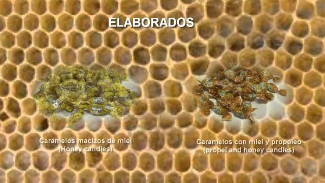 La Virgen de Extremadura (productos apícolas naturales)