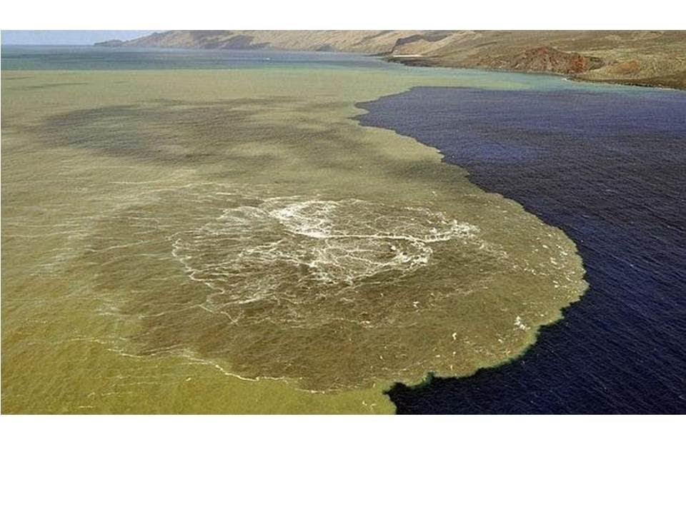Erupción en el Hierro: Aparecen Cuatro Nuevos Volcanes