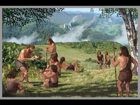 Los antepasados del hombre en la tierra